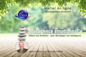 Read more about the article Atelier en ligne | L'intelligence Emotionnelle